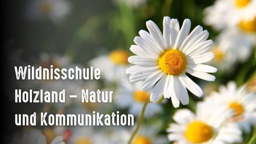 Wildnisschule Holzland – Natur und Kommunikation