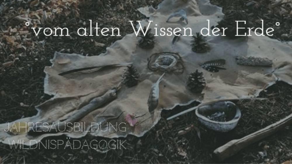 Wildnisschule Berlin | Natur- und Wildnispädagogik